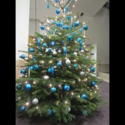 A christmas tree at the OUP Oxford office