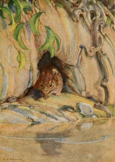 A brown little face, with whiskers. A grave round face, with the same twinkle in its eye that had first attracted his notice. Small neat ears and thick silky hair. It was the Water Rat! Image public domain via Wikimedia Commons.