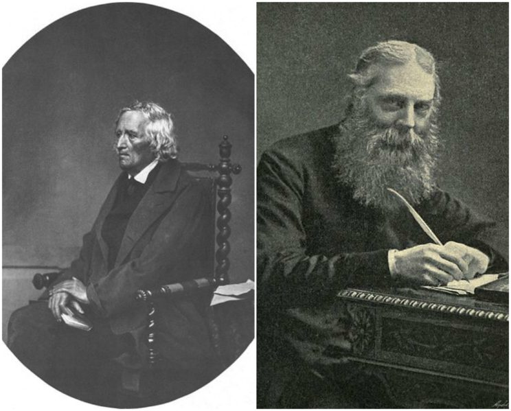 acob Grimm and Walter W. Skeat are the two scholars to whom we owe the answer about the origin of the verb loom. Etymology should not be anonymous.