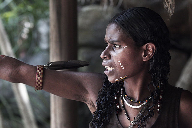 Australia: Aboriginal Culture 002. Photo by Steve Evans from Citizen of the World.  Creative Commons via Wikimedia Commons.