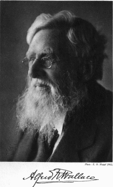 Alfred_Russel_Wallace_(1912)