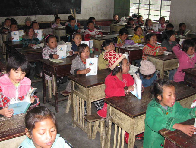 School children worldwide may be affected by chemical brain drain (China)