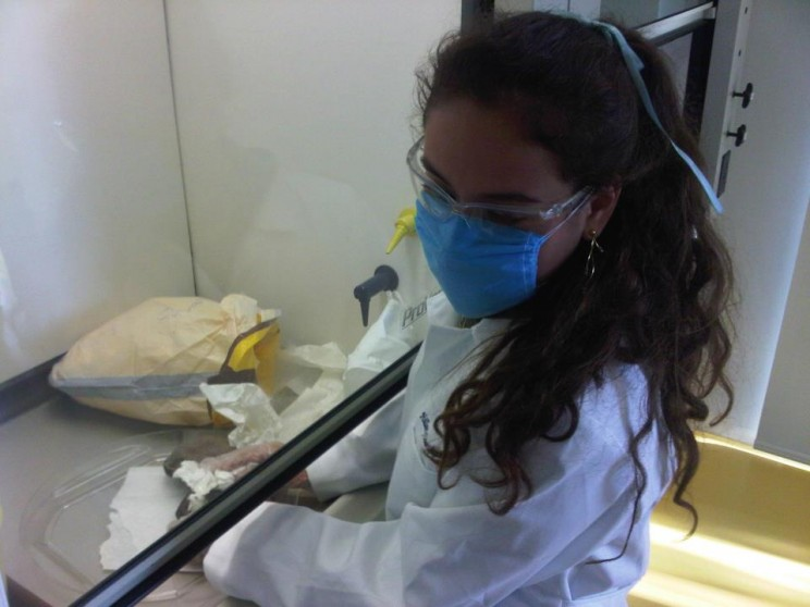 Medical_student_at_the_laboratories_of_ITESM_CCM
