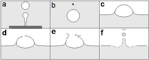 Figure 2: Schematic example of Bubble formation (a), rise (b), surfacing (c), rupture (d), film droplet formation (e), and finally jet droplet formation (f) illustrating the life of bubbles from birth to death. (Bird, 2014, used with permission)