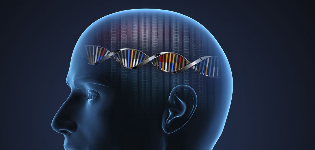 The genetics of consciousness | OUPblog