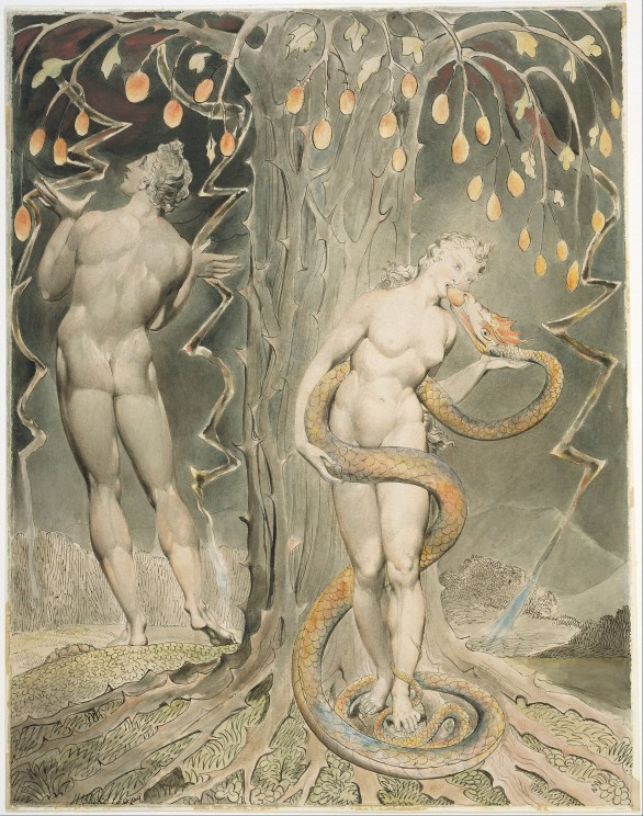 2048px-William_Blake_-_The_Temptation_and_Fall_of_Eve_(Illustration_to_Milton's_'Paradise_Lost')_-_Google_Art_Project