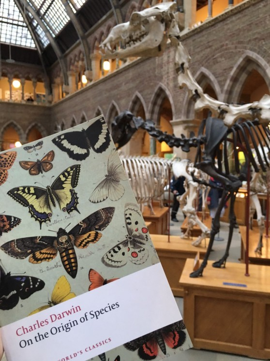 On the Origin of Species at the Oxford University Museum of Natural History. Photo by Dan Parker.