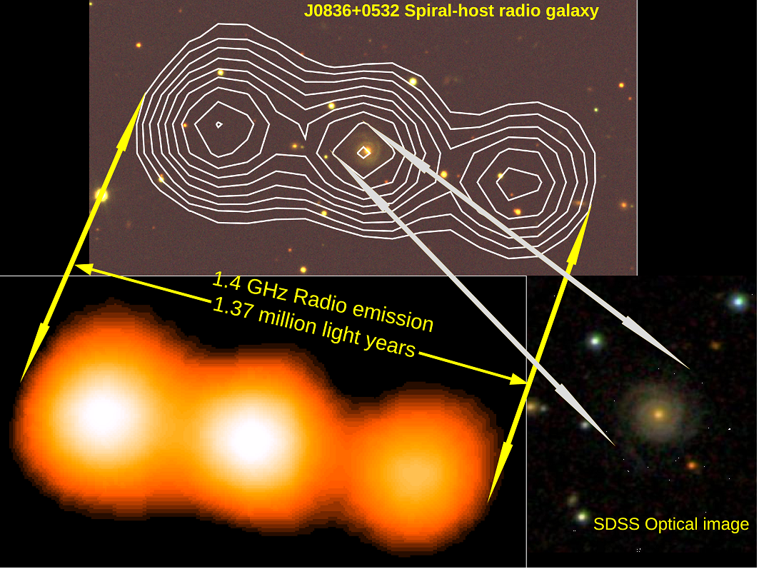 J083+0532, a spiral galaxy with million-light-years large radio emitting jet-lobe structure. Upper panel shows contours of radio emission overplotted on the optical image from Sloane Digital Sky Survey (SDSS). Lower left panel represents the false colour radio image while lower right panel shows SDSS optical image.