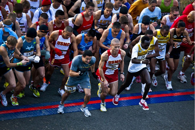 A marathon: certainly not a stampede of wethers.