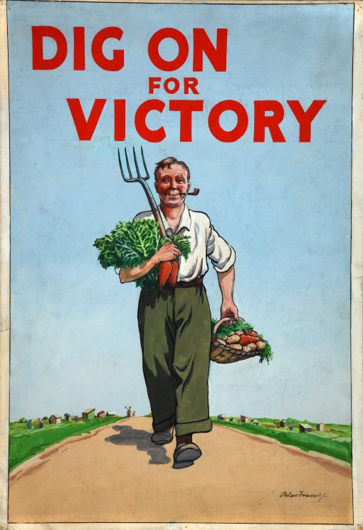 Soil_dig for victory