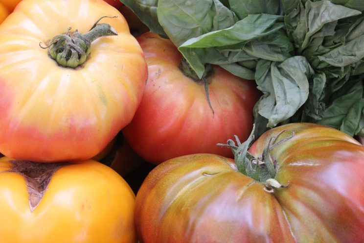While thinking of heirlooms, don't forget the heirloom tomato (the American name of the vegetable). It is called heritage tomato in Great Britain. The main description on the Internet praises it's (sic) valuable characteristics.