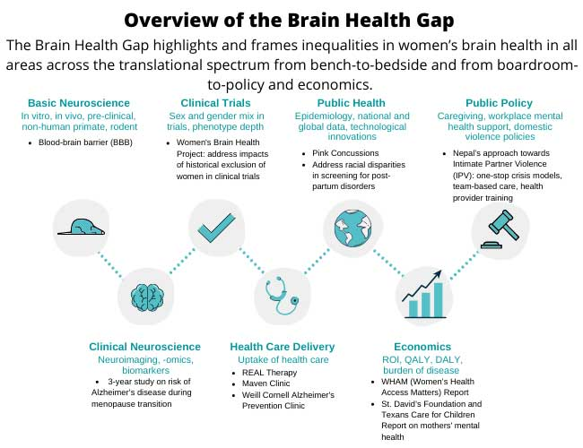 overview of the brain health gap